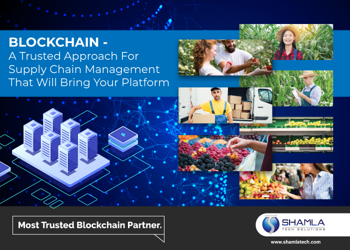 Supply Chain Blockchain Development
